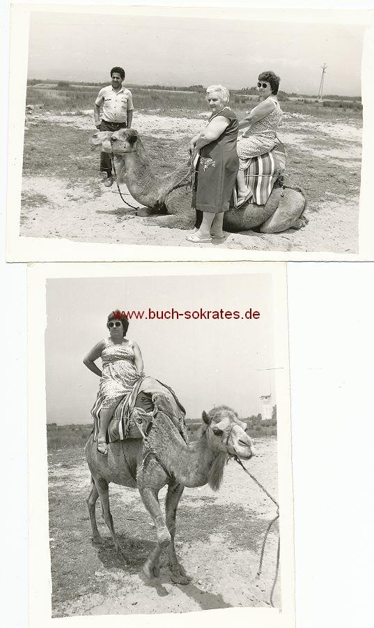 Foto Zwei Touristinnen auf einem Kamel (ca. 1980)