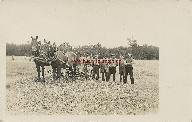 s/w-Foto-Postkarte Gruppe Landarbeiter / Bauern aus Polen (ca. 1925)