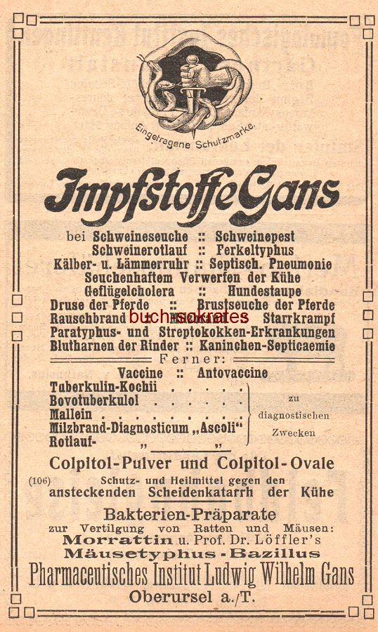 Werbe-Anzeige / Werbung/Reklame Impfstoffe Gans - Pharmaceutisches Institut Ludwig Wilhelm Gans, Oberursel a/T. (HK17)