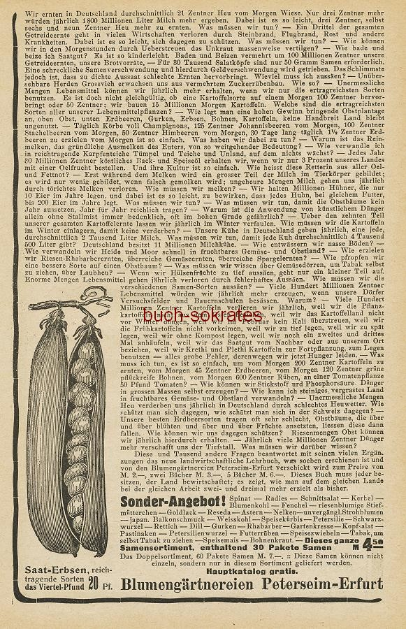 Werbe-Anzeige / Werbung/Reklame Blumengärtnereien Peterseim-Erfurt (HL19/Mrz)